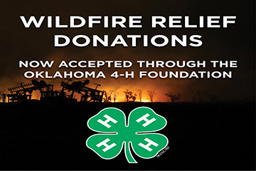 Fund established to help 4-H families with wildfire recovery