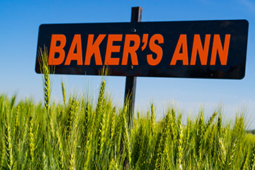 The art and science of naming a wheat variety