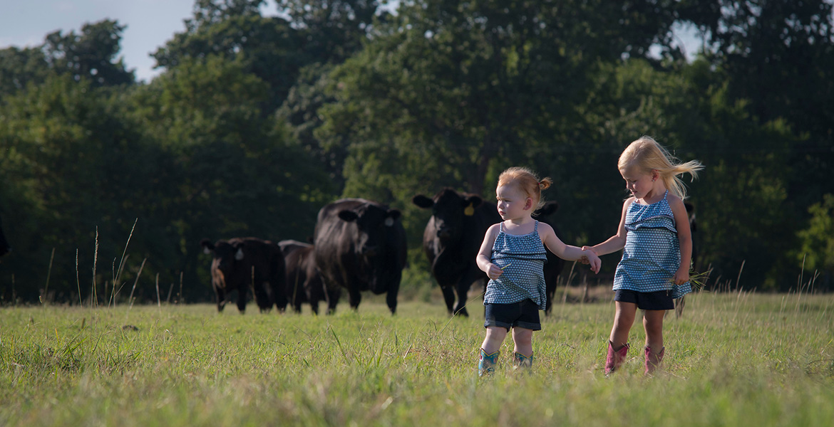 Photo of two small girls with cattle in the background.