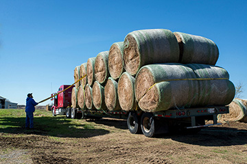Hay, fencing supplies chief needs for Beaver County wildfire recovery
