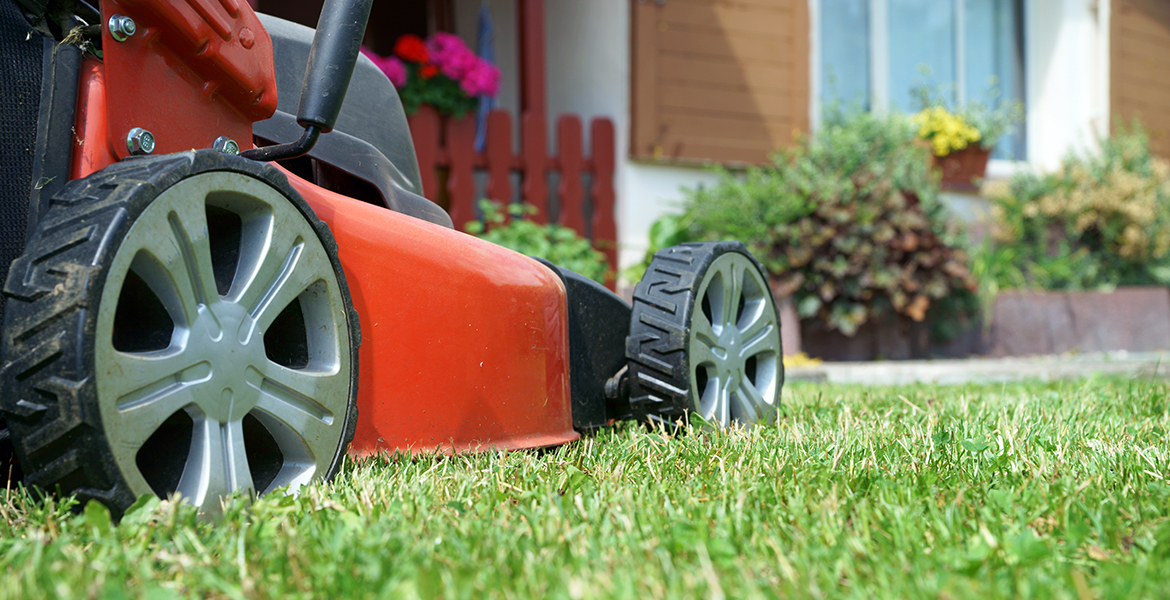 Close-up photo from wheel-height of lawnmower cutting a lawn.