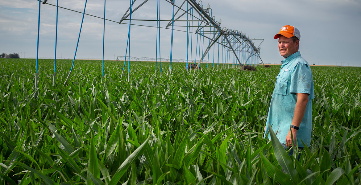 Photo of Jason Warren in a field of irrigated corn.
