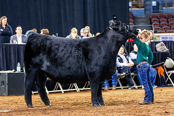 Ranchers' webinars turn to youth events