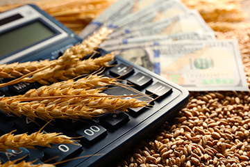 Farm finance and budgeting resources available