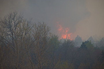 Increased risk of forest wildfire from redcedar invasion of Oklahoma's oak forests