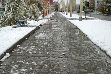 Deicing methods can be harmful to plants and hardscapes