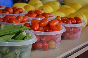 Informative program will help develop farmers market managers