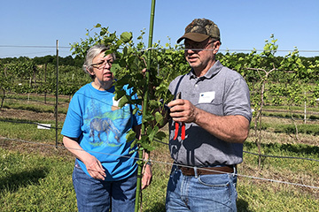 Register now for OSU's Grape Management Course