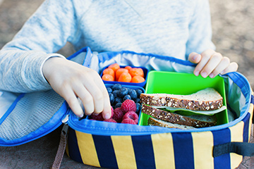 Back to school: lunch box food safety