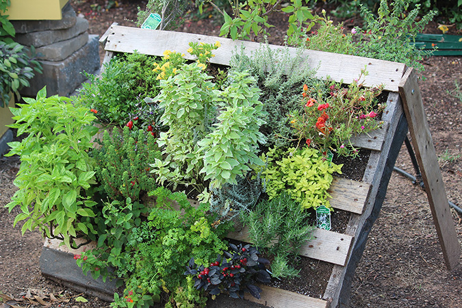 Pleasing Grow More In Less Space With Vertical Gardening News And Short Links Chair Design For Home Short Linksinfo