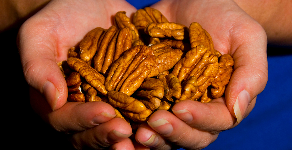 Technology allows pecan producers to continue learning