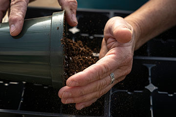 Starting seeds indoors can be an enjoyable winter garden project