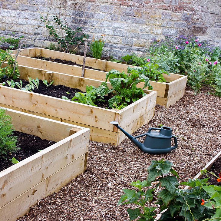 Gardening Beds: Have You Considered Raised Bed Gardening?