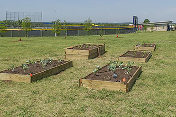 Raised beds can keep gardeners busy until spring