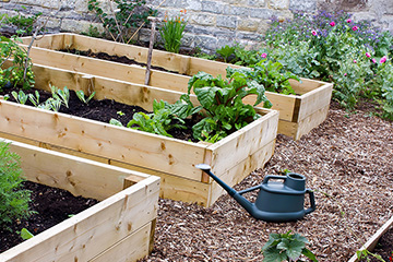 Have you considered raised bed gardening?
