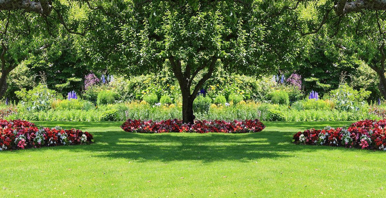 Shedding Light On Shade Gardening News And Information