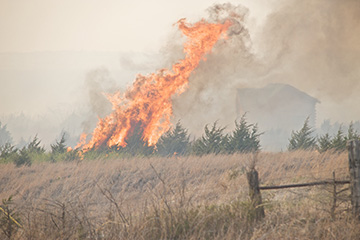 Tips for removing smoke odor following a wildfire