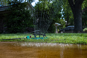 Tips to conserve water in the landscape