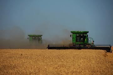 Wheat harvest adapts to COVID-19 precautions