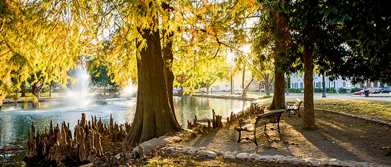campus image: theta pond