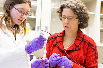 New research grants inspire faculty to 'swing for the fences'
