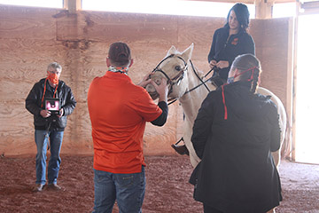 When horses roar: Evaluating the equine upper respiratory tract