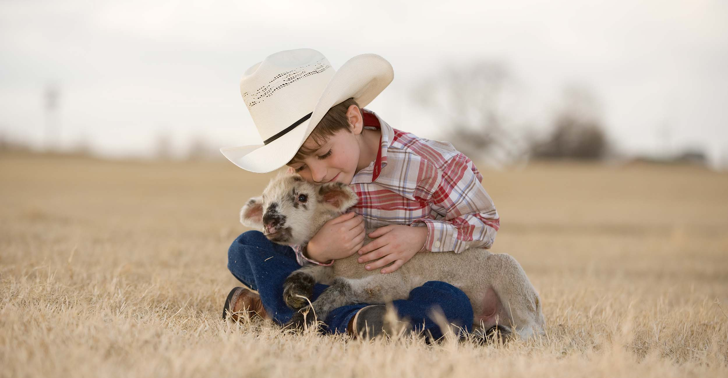 Photo of boy with sheep