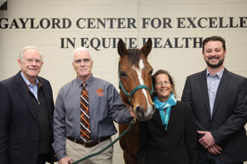 Research to Aid Wild Horses