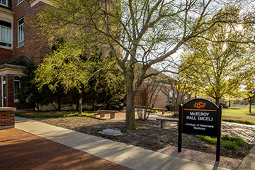 Two OSU College of Veterinary Medicine standouts honored with Young Investigator Awards