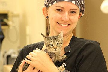 OSU Expands Shelter Medicine Program