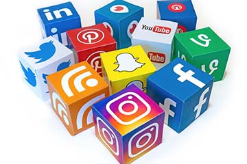 Veterinary Viewpoints: Giving and Receiving Veterinary Medical Advice via Social Media