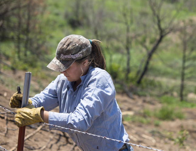 Woman fixing fence after wildfires