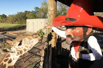 Pistol Pete parties with alumni families at Tulsa and Oklahoma City zoos