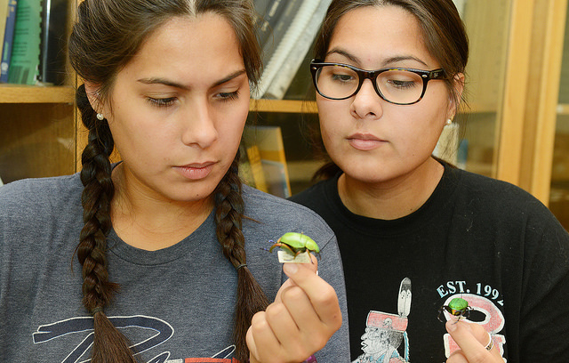 Native American twins at OSU to research insect-related diseases