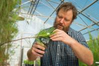 OSU scientist leads massive drought research project