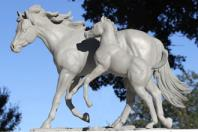 OSU begins plans for new Welcome Plaza featuring horse sculptures