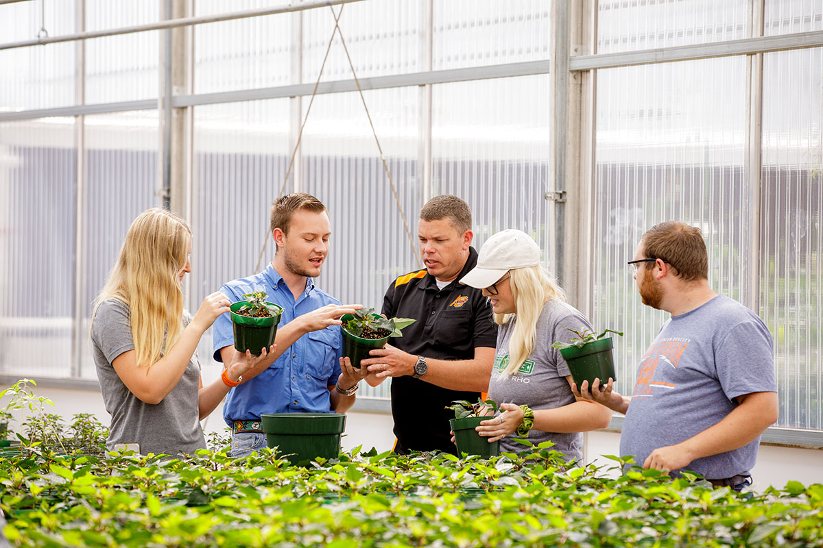 Professor and students gather around plants in greenhouse